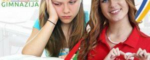 REŠENJE NADOHVAT RUKE: Šta ako vaš mali maturant ne upiše školu koju želi?